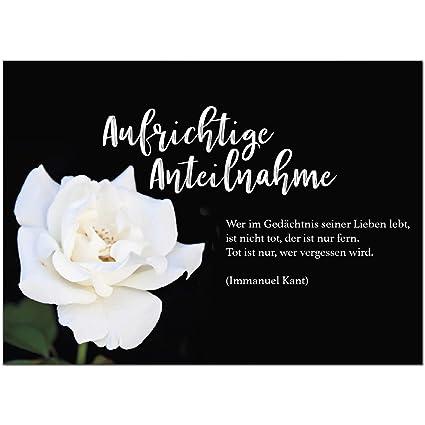 8 X Beileidskarte Mit Umschlagmotiv Aufrichtige Anteilnahme Weiße Rosebeerdigung Trauer Sterbefall Todanteilnahmebeileid