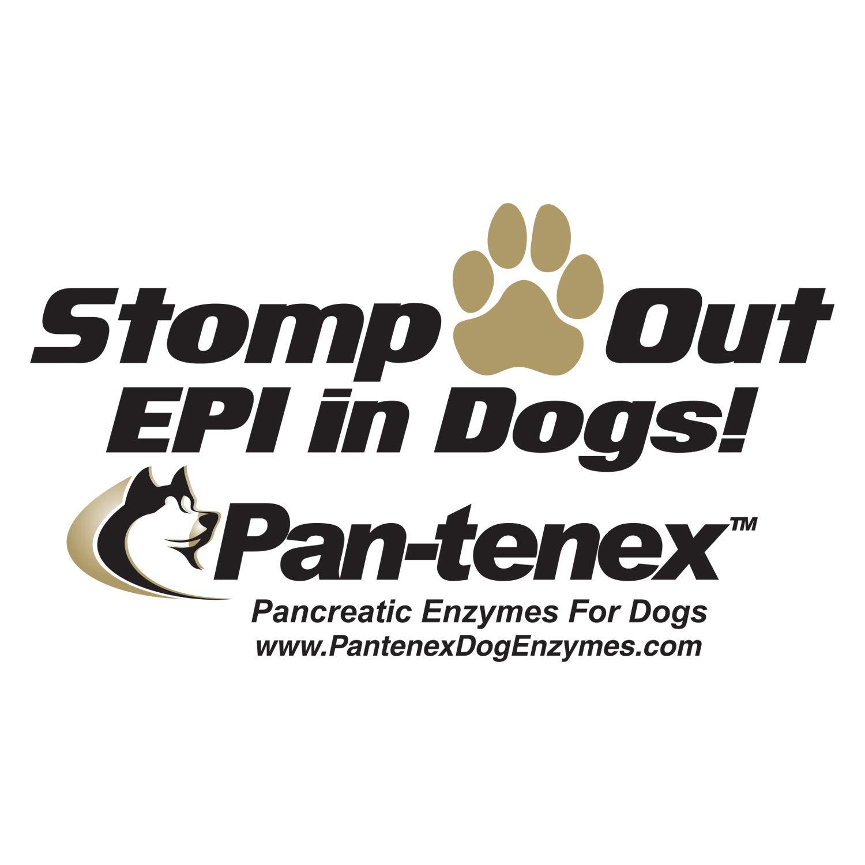 Amazon.com: pan-tenex | 10 x enzimas digestivas para perros ...
