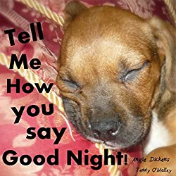 Tell Me How You Say Good Night