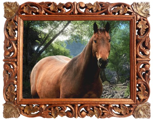 Moril Calm Horse Wallpaper, a Wall Paper Framed in Wood Crafts Frame