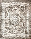Traditional Persian Vintage Design Rug Light Brown Rug 8' x 10' FT (305cm x 244cm) Sofia Area Rug Inspired Overdyed Distressed Fancy