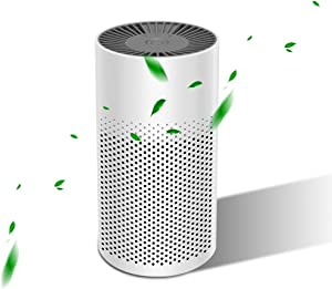 YUEMIDAMY Portable Air Purifier for Home Bedroom Office Desktop Car Baby Room Pet Room with True HEPA Filter Mini USB Air Cleaner - More Healthier, Safer and Quiet
