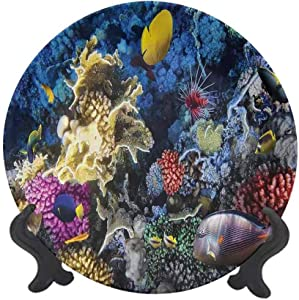 "Ocean 7"" Ceramic Decorative Plate,Colorful Coral Reef and Fishes Colony in Red Sea Egypt Africa Underwater Life Image Dinner Plate Decor Accessory for Dining Table Tabletop Home Decor Multicolor"