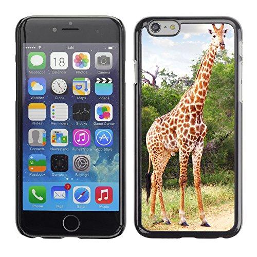 "Hülle Case Schutzhülle Cover Premium Case // V00002675 Giraffe // Apple iPhone 6 6S 6G 4.7"""