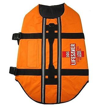fetoo Perros nadar Chaleco flotador Chaleco salvavidas para perros (Naranja): Amazon.es: Productos para mascotas