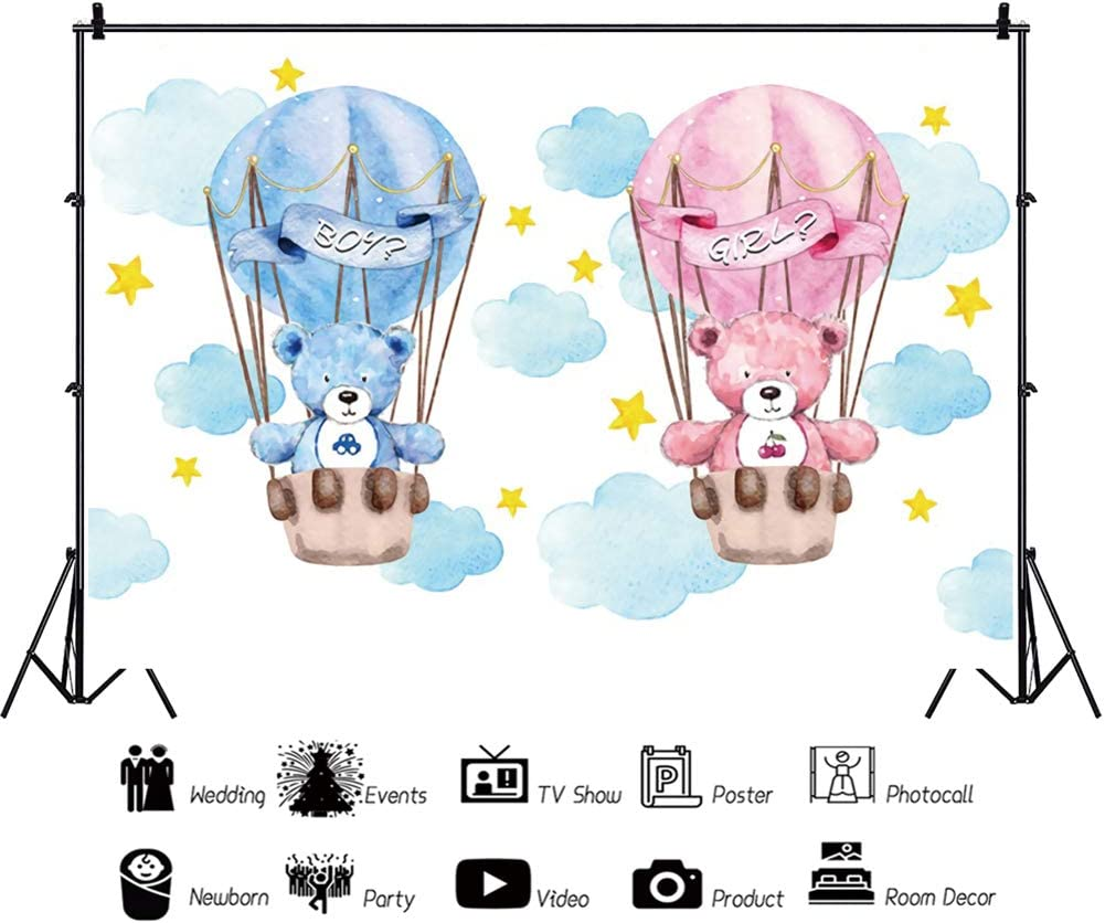 YEELE Boy or Girl Backdrop 10x8ft Gender Reveal Party Hot Air Balloon Theme Photography Background Kids Infant Newborn Photos Digital Wallpaper Photobooth Studio Props