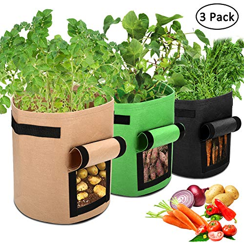Easy Vegetable Garden Bucket Planter For Patio or Deck