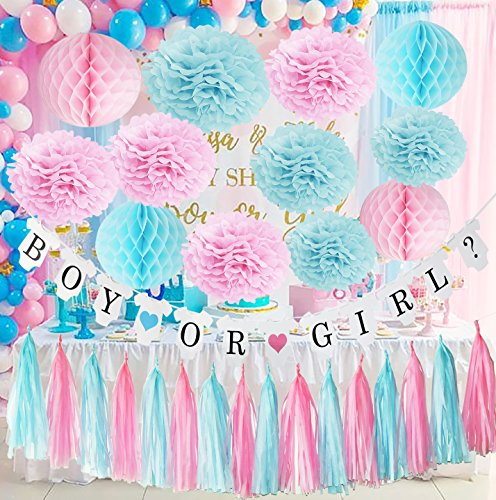 Gender Reveal Party Supplies Boy or Girl Banner - Boy or Girl Party Decorations Baby Shower Baby Shower Party,Newborn Baby Celebration Pink and Blue Decorations/Gender Reveal Decorations]()