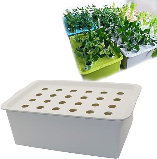 Wenhu 24 Hoyos Plant Site Kit hidropónico Macetas para jardín Jardineras Macetas para Plantas de Interior Caja de Cultivo Kit de Cultivo Botes de vivero de Burbujas 1 Juego (Gris): Amazon.es: Hogar