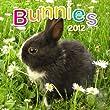 2012 Bunnies Wall calendar