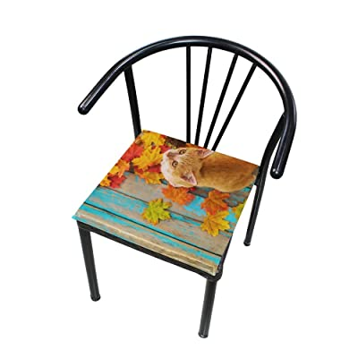 """Bardic HNTGHX Outdoor/Indoor Chair Cushion Maple Leaf Animal Cat Square Memory Foam Seat Pads Cushion for Patio Dining, 16"""" x 16"""": Home & Kitchen"""