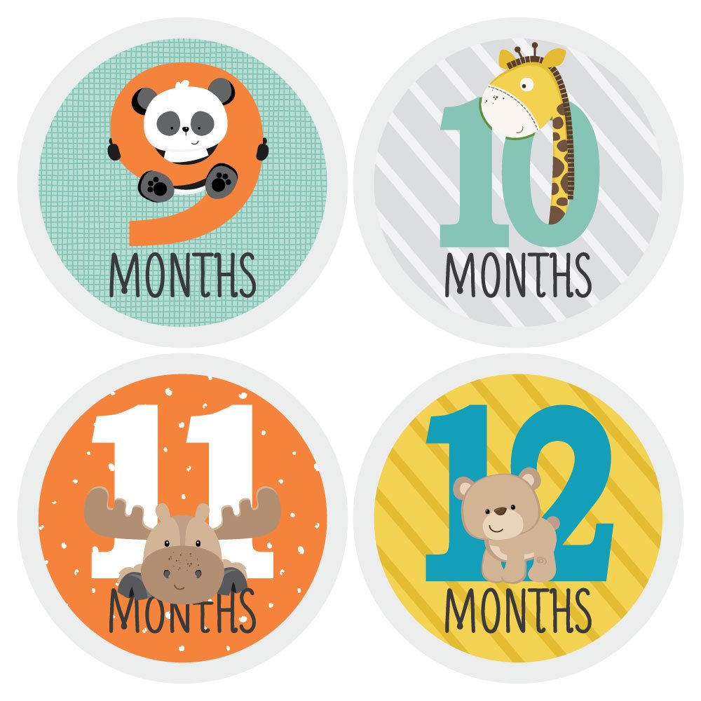 Zoo Animals - Baby Monthly Sticker Set - Baby Shower Gift Ideas - 12 Piece by Big Dot of Happiness (Image #4)