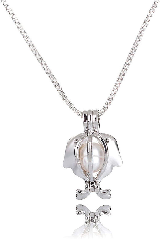 Cool-House-Jewelry shop Caja de la Cadena explosión de Agua Dulce Natural de la ostra Perla DIY Collar Pendiente de los Accesorios de la Jaula