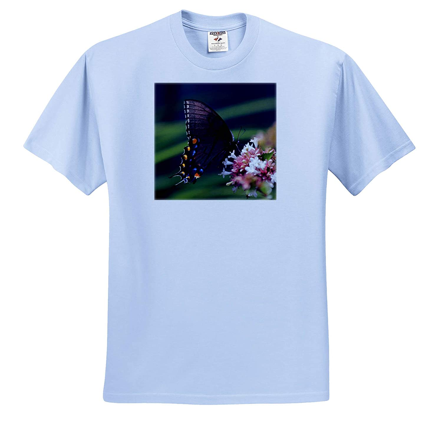 Nature - T-Shirts Photo of a Black Swallowtail Butterfly Pollinating an abelia Flower 3dRose Stamp City