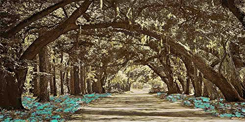 Tunnel of Trees - Brown Background - 9 Decor Colors, Canvas Wrapped, Home Decor Wall Art Floral Flower Pictures, Living Room, Bedroom, Family Room, Kids Room) (Aqua, 20x40) by Canvas Wall Art 4 You