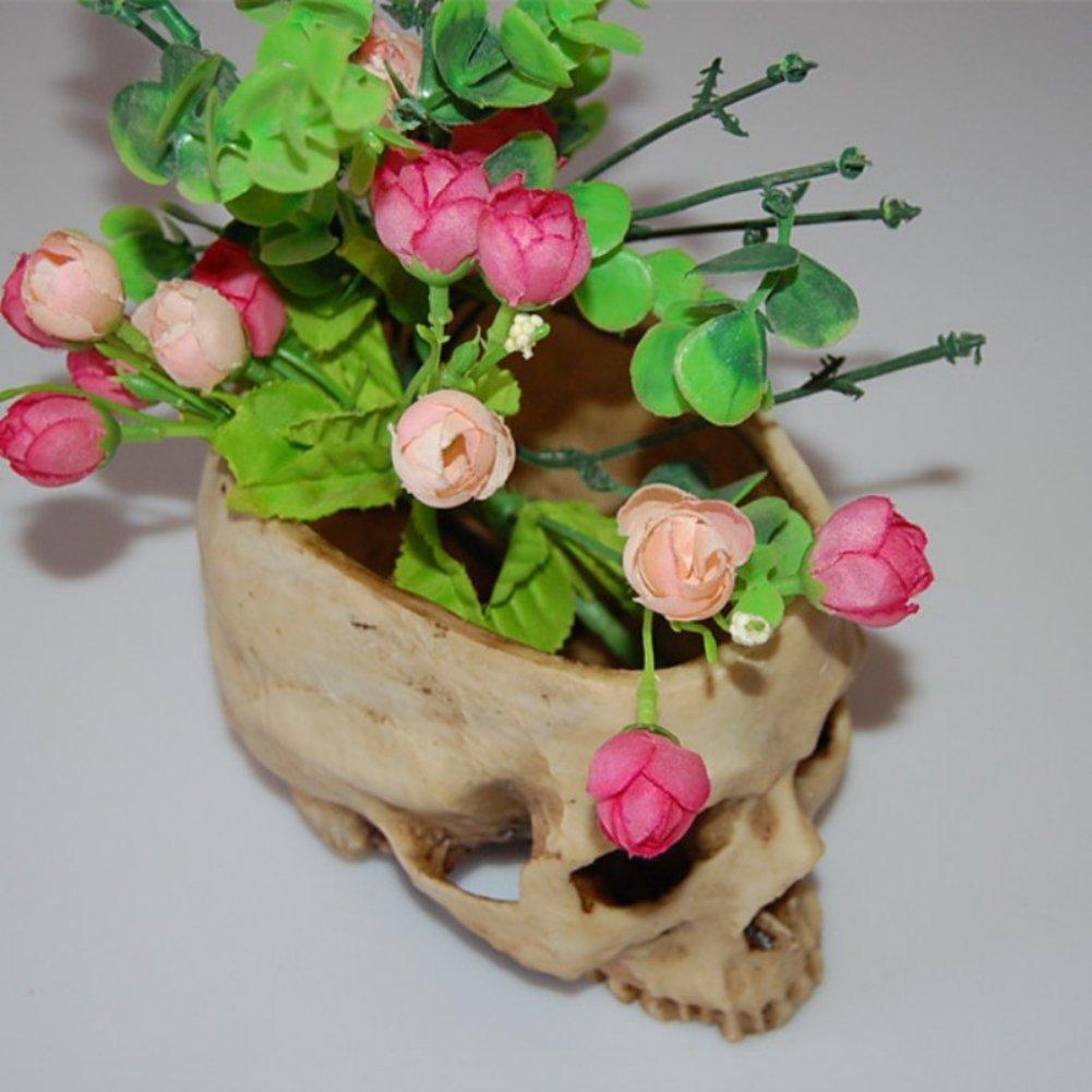 Amazon Xinhuaya Retro Human Skull Head Flower Pot Planter Bed