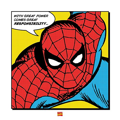 Spider-Man - Marvel Comic Poster / Art Print With Great Power