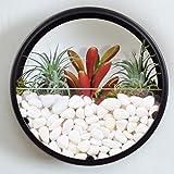 Home Wall Decor vase Succulent Plants air Plant planters Artificial Flowers Container Mural Planter Black S