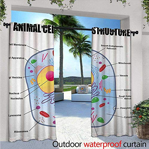 BlountDecor Educational Indoor/Outdoor Single Panel Print Window Curtain W84 x L108 Microbiology Theme Animal Cell Structure Genetic Research School Study Science Silver Grommet Top Drape Multicolor