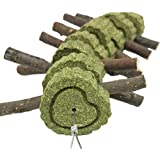 Bunny Chew Toys for Teeth, Natural Organic Apple Wood Sticks for Rabbits, Chinchilla, Guinea Pigs, Hamsters, Parrots and Othe