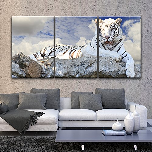 3 Panel White Tiger Lying on the Rock Gallery x 3 Panels