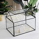 Purzest Large Glass Geometric Terrarium Container Tabletop Large Close House Shape Box Planter for Succulent Plant Moss Fern