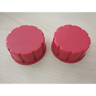 CM Concepts/Truepower Gas Can Replacement Solid Caps-2 Pack: Automotive