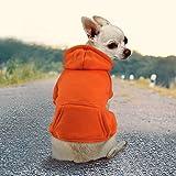 Abrigo Idepet con capucha para perros o gatos, hecho de algodón, para perros pequeños