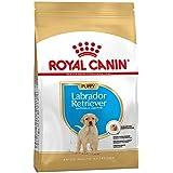 Royal Canin Labrador Junior, 3 kg