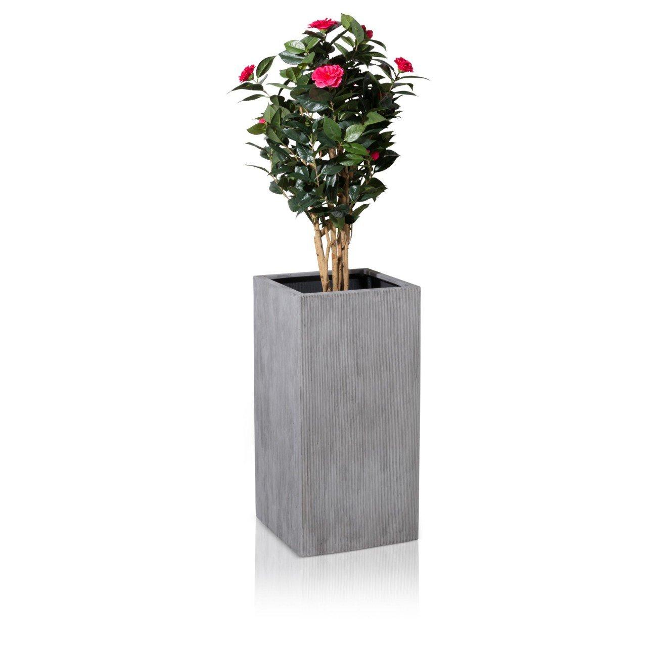 Pflanzkübel Blumenkübel TORRE 80 Fiberglas, 40x40x80 cm, grau ...