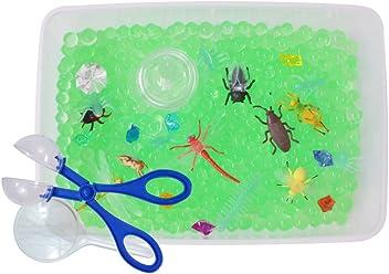 Creepy Crawler Bugs Discovery Box and Sensory Bin for Kids and Preschoolers  - Revelae Kids 831161e91