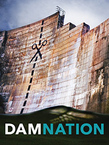 - DamNation (2014)
