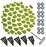 55 Piece Complete Climbing Holds Kit