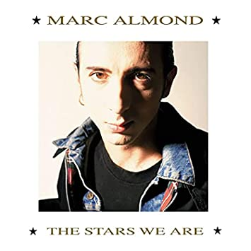 Image result for marc almond the stars we are