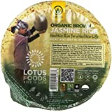 Lotus Foods Heat and Eat Rice Bowls, Jasmine, 7.4 Ounce (Pack of 6)