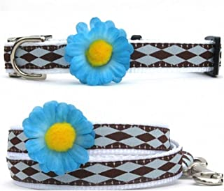"""product image for Diva-Dog 'Gerber Daisy Blue' Custom 5/8"""" Wide Dog Collar with Plain or Engraved Buckle, Matching Leash Available - Teacup, XS/S"""