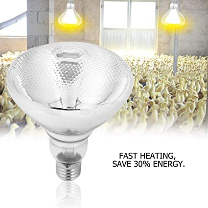Winter Farm Heater Animal Warm Lights Piglets Chickens Heat Warm Lamps Keep Warm