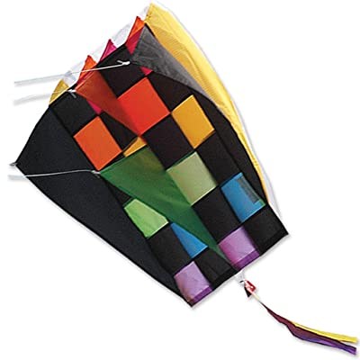 Kite - Parafoil 2 Rainbow Tecmo Kite with 500 Ft 30lb Test String and Winder: Toys & Games