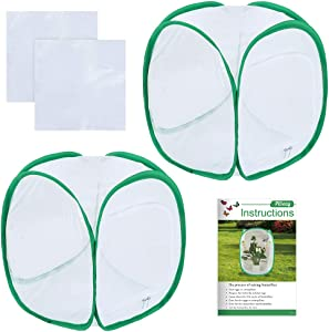 Pllieay 2 Pieces 12 Inch Tall Butterfly Habitat Cage with Instructions and PVC Floor Covers, Collapsible Light-transmitting Terrarium White Insect and Butterfly Net for Kids Raising Insects