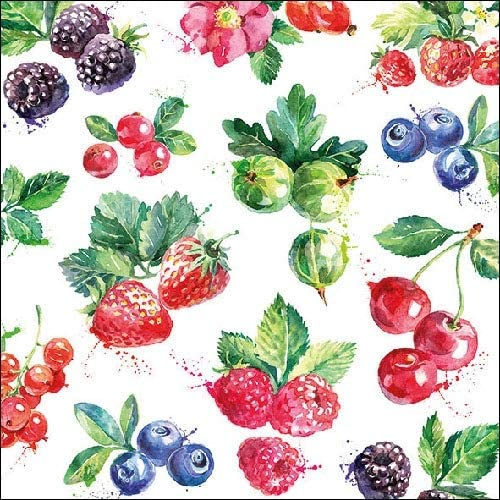 Mixed Fruit 4 Individual Napkins for Craft /& Napkin Art. 4 Paper Napkins for Decoupage 3-ply 33 x 33cm