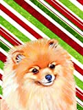 Cheap Caroline's Treasures LH9260CHF Pomeranian Candy Cane Holiday Christmas Flag Canvas, Large, Multicolor