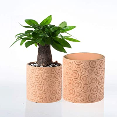 "Hotsung Ceramic Flower Pot Garden Planters 6"" and 5.2"" Set of 2 Indoor Outdoor, Modern Nordic Style Plant Containers (Orange): Garden & Outdoor"