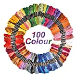 6 head embroidery machine - Hisome Embroidery Thread Craft Cross Stitch Floss 100 Skeins Rainbow Color Friendship Bracelet Floss