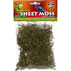T-Rex Terra Accents Sheet Moss.4 oz, 40 CIN, Green