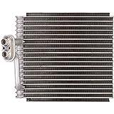 Spectra Premium 1010300 Evaporator
