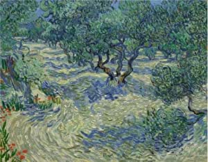 'Vincent van Gogh,Olive Orchard,1889' oil painting, 18x23 inch / 46x59 cm ,printed on Perfect effect Canvas ,this High quality Art Decorative Canvas Prints is perfectly suitalbe for Basement artwork and Home decoration and Gifts