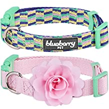 """Blueberry Pet Pack of 2 Multiple Designs Mix and Match Pretty Picks Dog Collar for Puppies & Small Dogs with Detachable Pink Flower Accessory, S, Neck 12""""-16"""""""