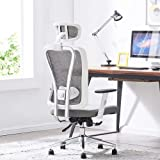 Cedric Office Chair,Breathable Mesh Computer Chair with Ergonomic Adjustable Lumbar Support, White Swivel Desk Chair with Adj