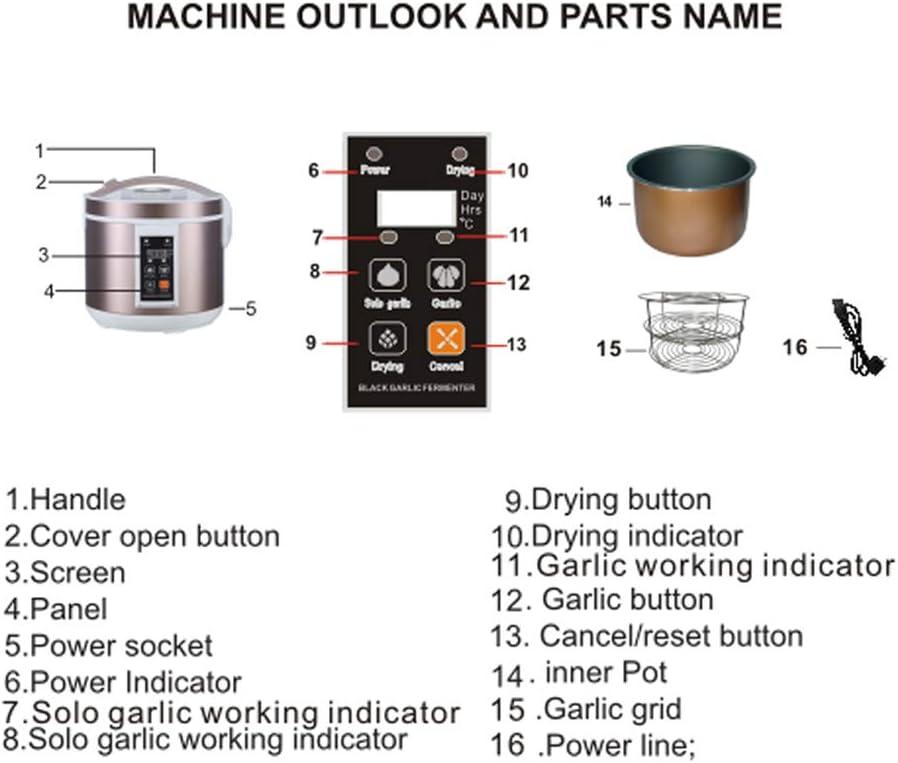 JanTeel Fermentador de ajo Negro, automático Negro ajo Máquina Auto Hacer Reciclar fermentar Equipos de Secado, Pote eléctrico de la fermentación para el ajo Negro DIY de la Cocina (5L, Golden): Amazon.es: