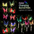 GoLine Solar Butterfly Lights Outdoor.